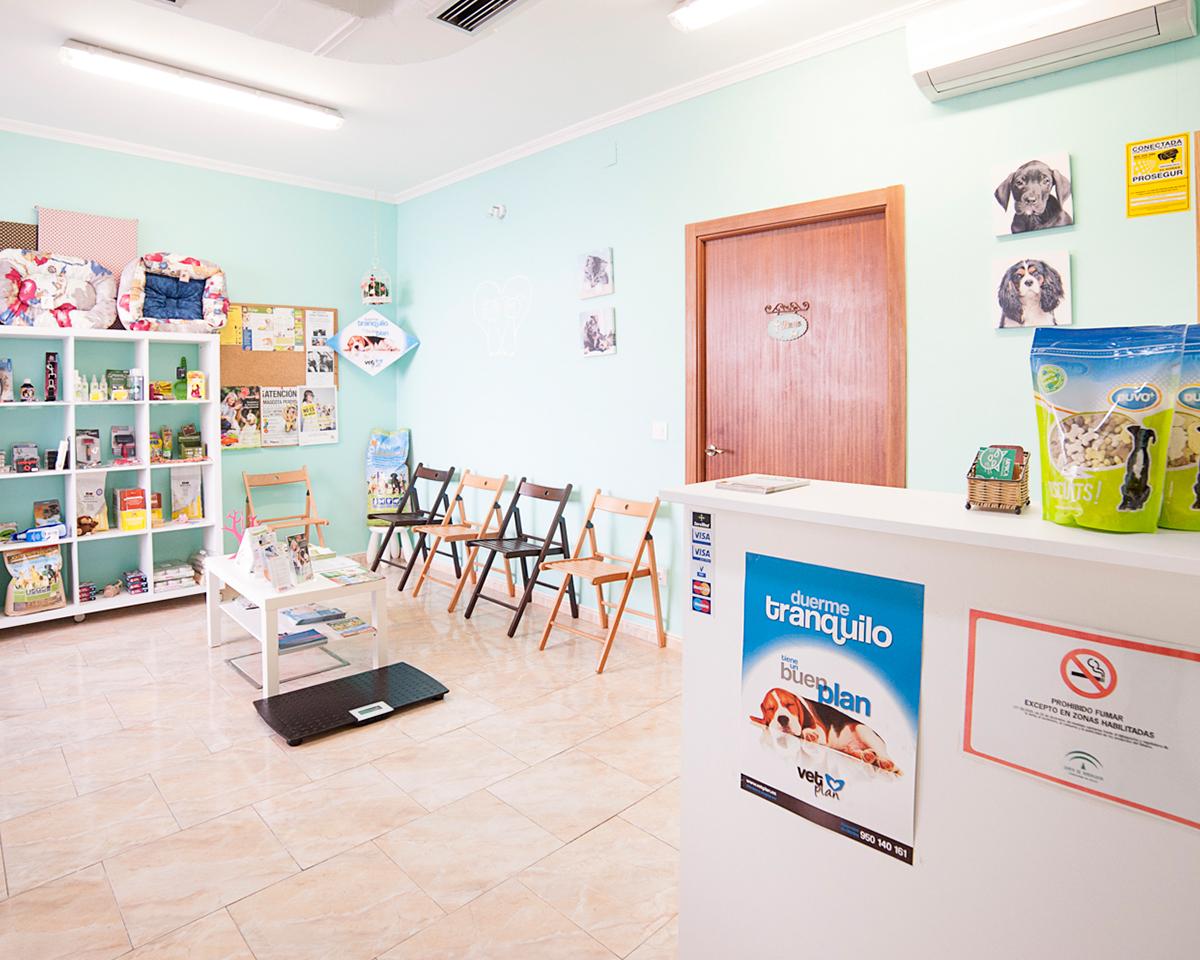 fotografia-sevilla-centro-veterinario